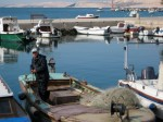 Fisherman in Pag